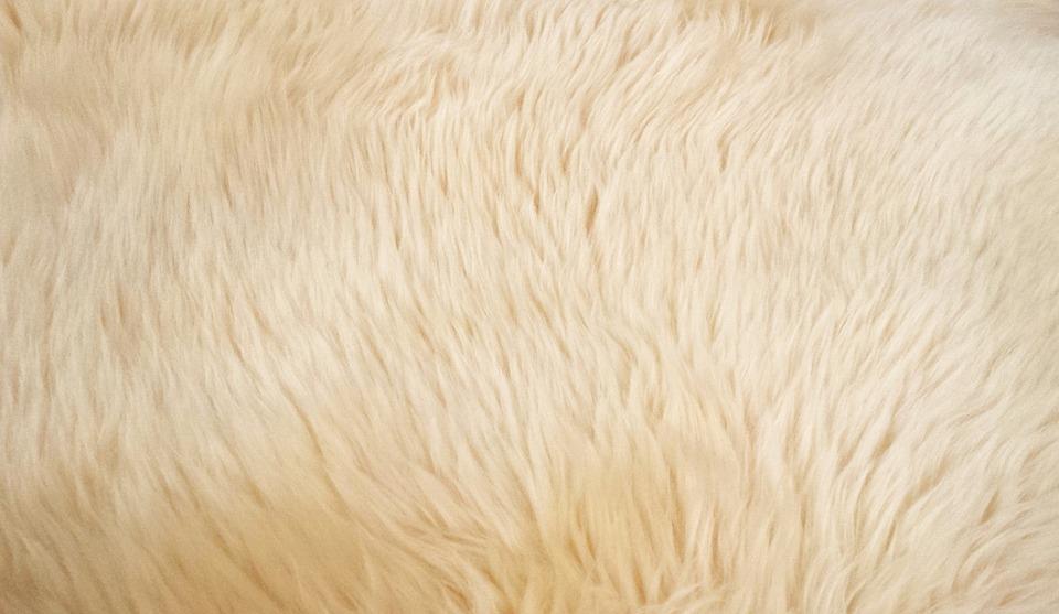 karpet lantai murah