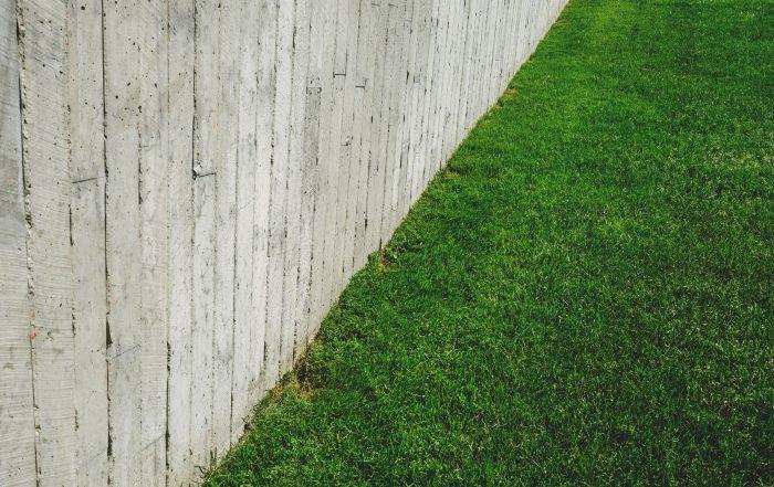 hal-yang-harus-di-perhatikan-sebelum-memilih-rumput-sintetis